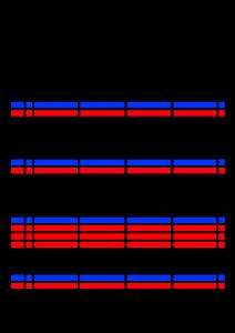 2020年9月 家族カレンダー 4人 シンプル 背景透過