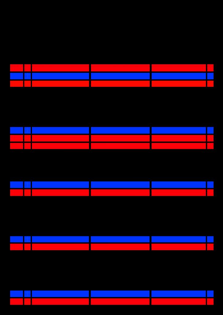 2021年家族カレンダー シンプル 背景透過PNG形式 3人用 1月