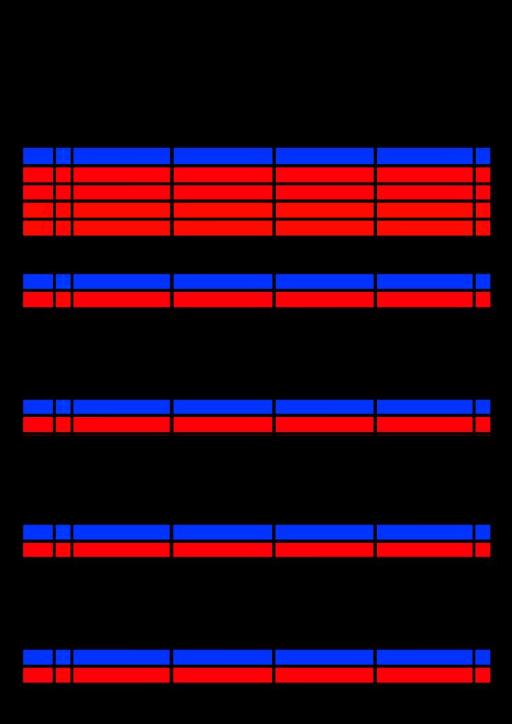 2021年家族カレンダー シンプル 背景透過PNG形式 4人用 5月