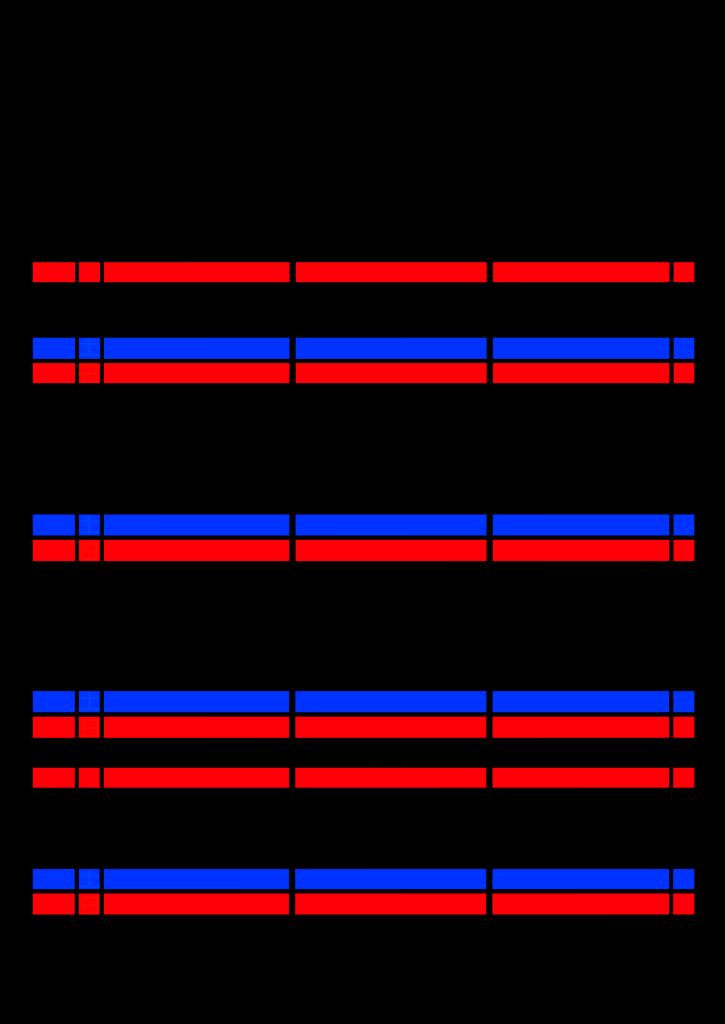 2021年家族カレンダー シンプル 背景透過PNG形式 3人用 11月