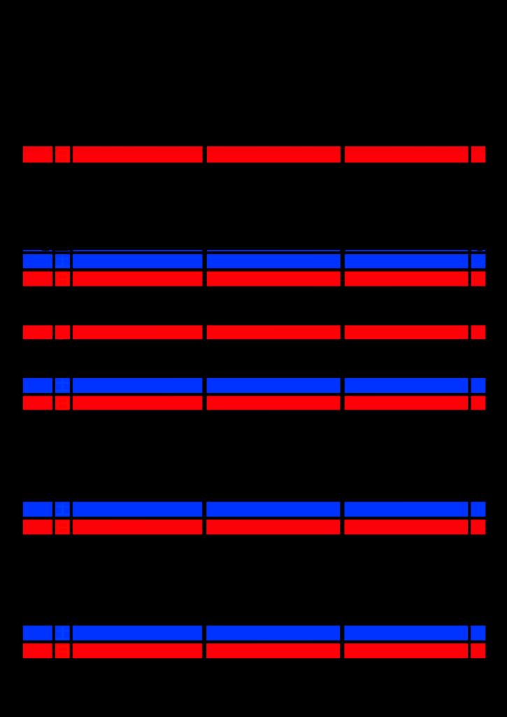 2021年家族カレンダー シンプル 背景透過PNG形式 3人用 8月
