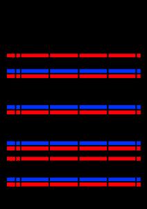 2021年家族カレンダー シンプル 背景透過PNG形式 4人用 11月
