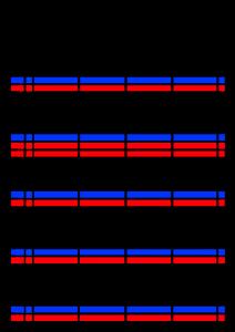 2021年家族カレンダー シンプル 背景透過PNG形式 4人用 10月