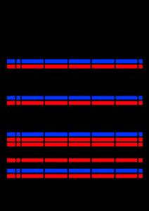 2021年家族カレンダー シンプル 背景透過PNG形式 5人用 9月