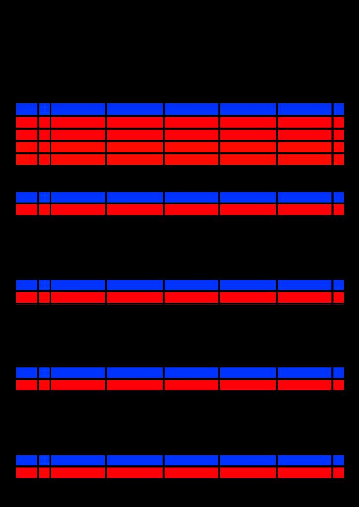 2021年家族カレンダー シンプル 背景透過PNG形式 5人用 5月