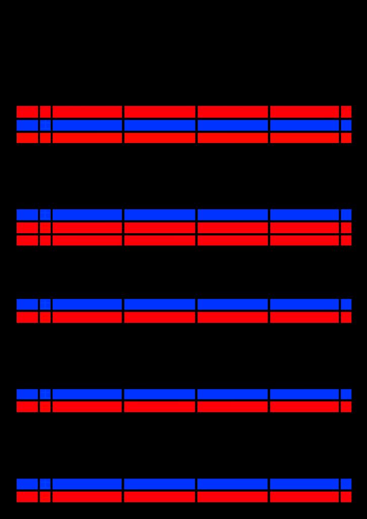 2021年家族カレンダー シンプル 背景透過PNG形式 4人用 1月