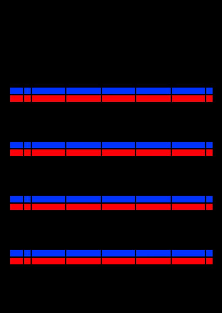 2021年家族カレンダー シンプル 背景透過PNG形式 5人用 12月