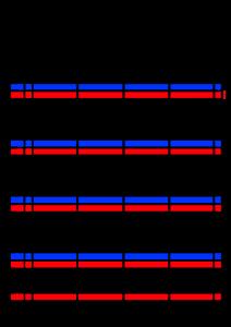 2021年家族カレンダー シンプル 背景透過PNG形式 4人用 4月