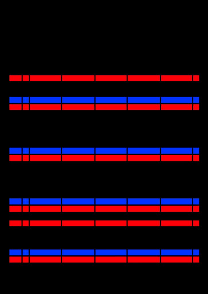2021年家族カレンダー シンプル 背景透過PNG形式 5人用 11月