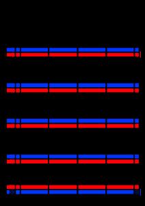 2022年(令和4年)家族カレンダー シンプル 背景透過PNG形式 無料 4人 4月