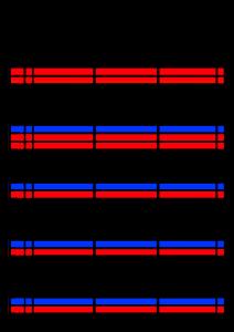 2022年(令和4年)家族カレンダー シンプル 背景透過PNG形式 無料 3人 1月