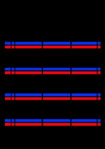 2022年(令和4年)家族カレンダー シンプル 背景透過PNG形式 無料 3人 6月