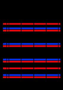 2022年(令和4年)家族カレンダー シンプル 背景透過PNG形式 無料 4人 11月