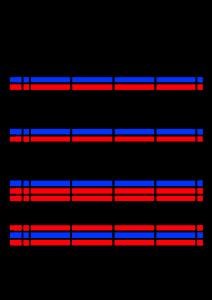 2022年(令和4年)家族カレンダー シンプル 背景透過PNG形式 無料 4人 9月