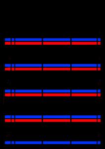 2022年(令和4年)家族カレンダー シンプル 背景透過PNG形式 無料 3人 12月