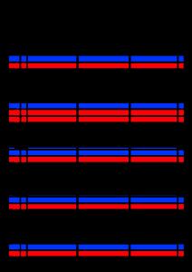 2022年(令和4年)家族カレンダー シンプル 背景透過PNG形式 無料 3人 10月