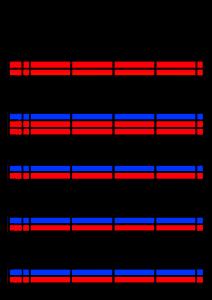 2022年(令和4年)家族カレンダー シンプル 背景透過PNG形式 無料 4人 1月