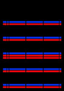 2022年(令和4年)家族カレンダー シンプル 背景透過PNG形式 無料 3人 7月