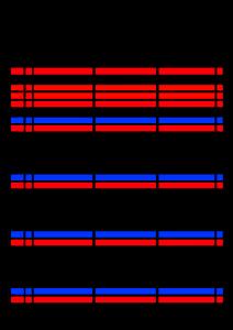 2022年(令和4年)家族カレンダー シンプル 背景透過PNG形式 無料 3人 5月