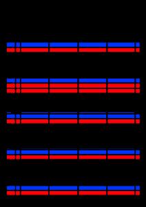 2022年(令和4年)家族カレンダー シンプル 背景透過PNG形式 無料 4人 10月