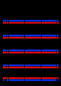 2022年(令和4年)家族カレンダー シンプル 背景透過PNG形式 無料 3人 4月