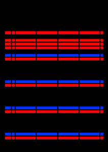 2022年(令和4年)家族カレンダー シンプル 背景透過PNG形式 無料 4人 5月