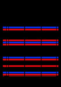 2022年(令和4年)家族カレンダー シンプル 背景透過PNG形式 無料 3人 2月