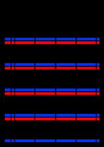 2022年(令和4年)家族カレンダー シンプル 背景透過PNG形式 無料 4人 12月